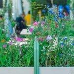 florian-tehran-27